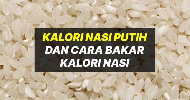kalori nasi putih